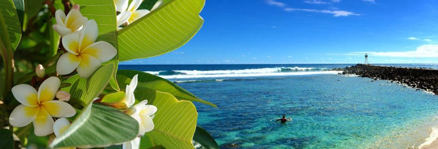 Locations de vacances dans l'ile d'Oléron